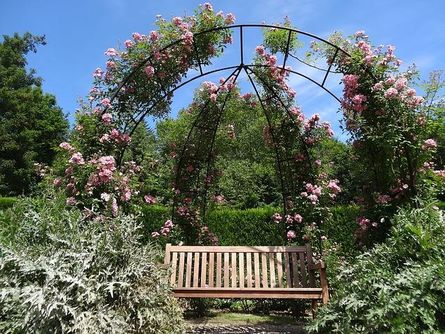 květiny nad lavicí