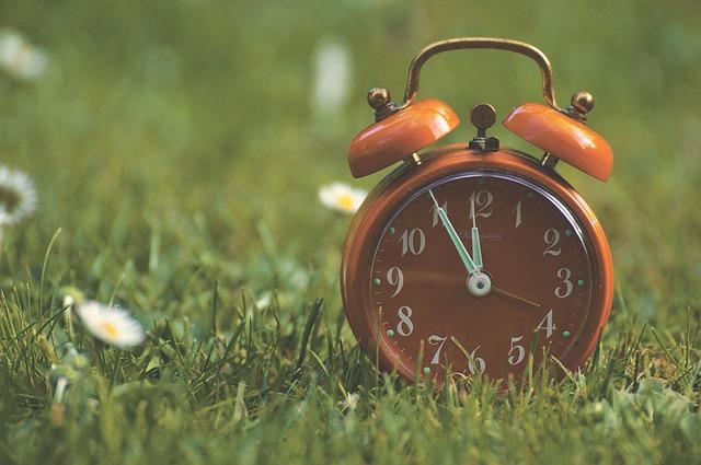budík v trávě