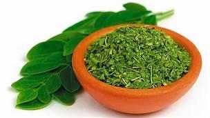 listy moringa olejodárná